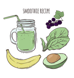 recipe smoothie healthy eating beverage ill vector image