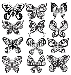 Set butterfly in black and white vector