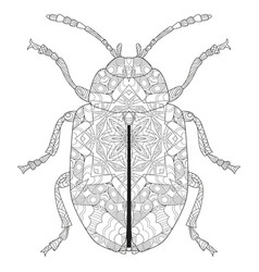 Zentangle stylized beetle hand drawn lace vector