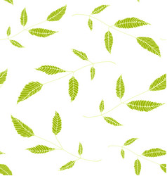 floral seamless pattern background green on white vector image vector image