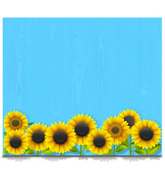 Blue wooden board with sunflowers vector