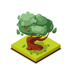 Green beech tree isometric 3d icon vector