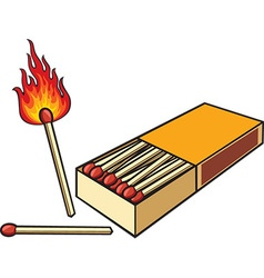 Matches and a Matchbox Icon vector image