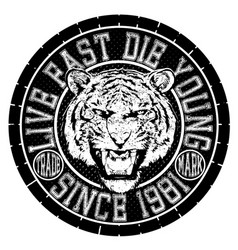 tee graphic design animal logo tiger vector image