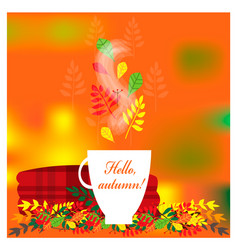 cozy autumn with plaid and cup of tea vector image
