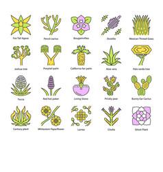 Desert plants color icons set exotic flora vector