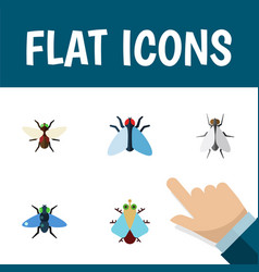 Flat icon housefly set of housefly bluebottle vector