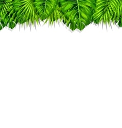 Frame Tropical Leaves Summer Background vector