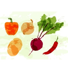 Set of colorful fresh vegetables stains vector image
