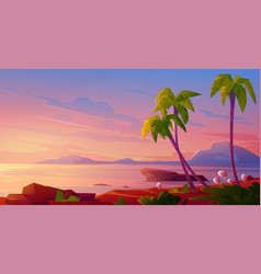 sunset or sunrise on beach tropical landscape vector image