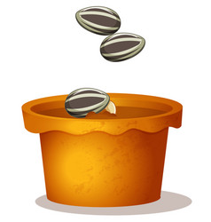Three sunflower seeds in potted plant vector