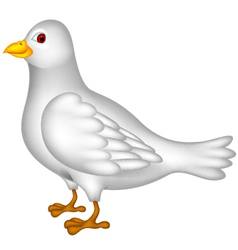 white dove cartoon vector image