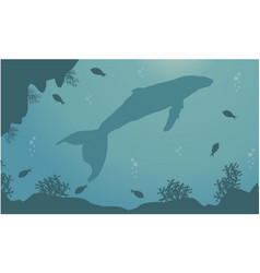 Landscape of whale and reef silhouettes vector