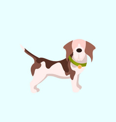 funny puppy cute little dog animal home pets vector image