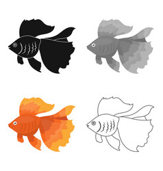 gold fish icon cartoon singe aquarium fish icon vector image