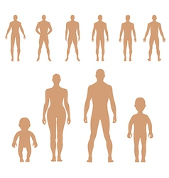 Human silhouette vector image