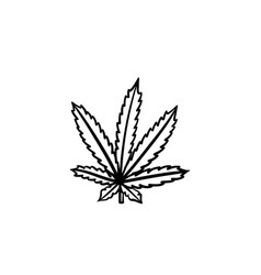 marijuana leaf hand drawn sketch icon vector image