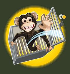 Bachimpanzee breaking a cage vector