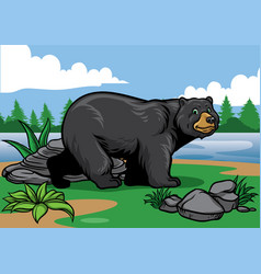 Black bear in the nature vector