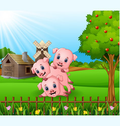cartoon three little pigs playing in the farm back vector image