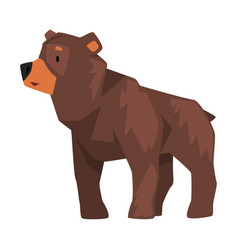 Cute brown grizzly bear wild animal character vector