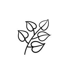 linden leaves on branch hand drawn sketch icon vector image