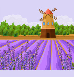 Mill and lavender fields background vector