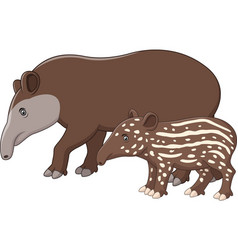 Mother and baby tapir vector