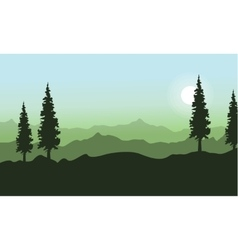 Spruce on the hill landscape at spring vector
