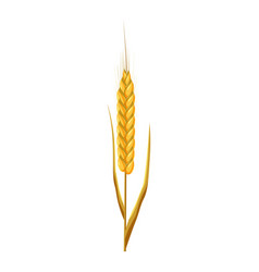 Wheat ear icon cartoon style vector