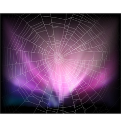 spider background vector image vector image