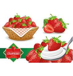 Set of different fresh strawberry groups vector