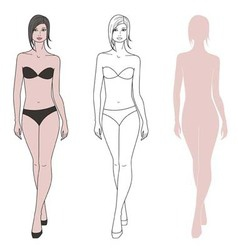Woman figure vector image vector image