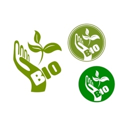 Bio concept with a hand holding leaves vector image