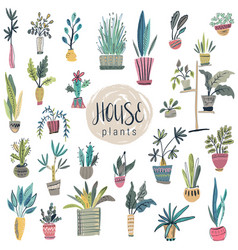 collection house plants in pots vector image