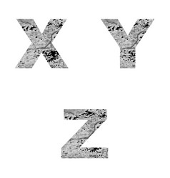 decorative letters x y z vector image