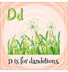 Flashcard letter D is for dandelions vector image