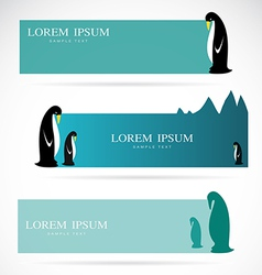 Penguin banners vector