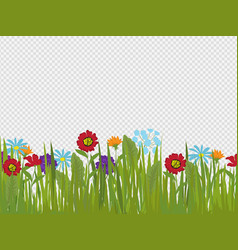 spring flowers and grass border isolated on vector image