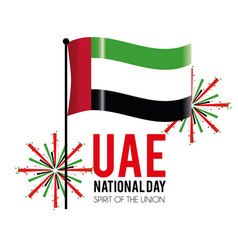 Uae flag with firewords to celebrate national day vector