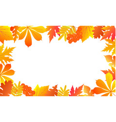 autumn background with falling leaves and rowan vector image