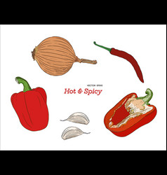 Hand drawn sketch style peppers set vector