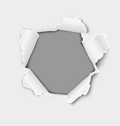 snatched middle of white paper with torn edges vector image