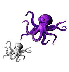 octopus ink hand drawn vintage vector image vector image