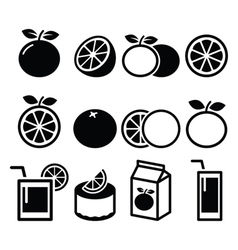 Orange icons set - food nature concept icons vector image vector image