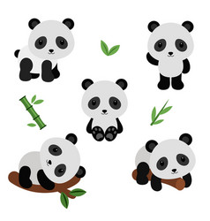 Adorable pandas in flat style vector