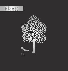 Black and white style icon of linden wood vector