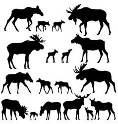 collection of silhouettes of mooses vector image