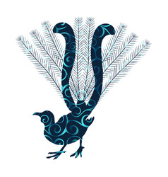 Lyrebird bird spiral pattern color silhouette vector