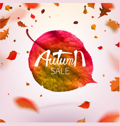 Stock sale autumn falling vector